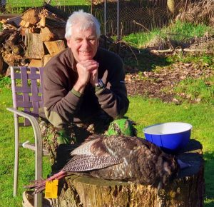 Turkey hunting. Ed Edwards sitting in a chair in front of a stump with a dead turkey on it