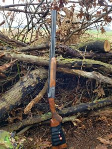 turkey hunting. Turkey hunting rifle propped up against a stack of logs